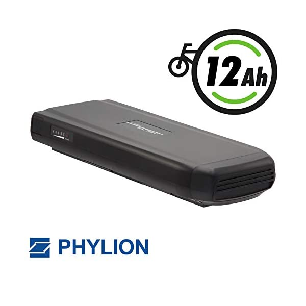 41mc28RvcsL. SS600  - JoyCube Phylion Akku 48V 11,6Ah Wall-ES für E-Bikes Pedelecs für Fischer u.a.