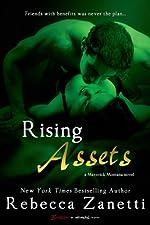 Rising Assets (Maverick Montana Book 3)