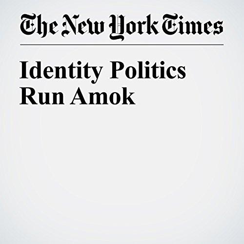 Identity Politics Run Amok audiobook cover art