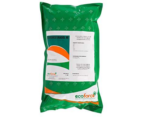 CULTIVERS Tierra de Diatomeas 1 kg Micronizada. 100% Natural y Ecológico. No calcinada de alta pureza, sin tratamientos ni residuos. Grado alimenticio E55IC