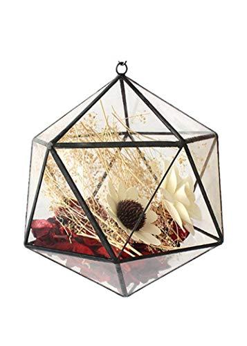 Y&M (TM) Pot de fleurs à suspendre en verre avec motif icosaèdre moderne 20,1 cm