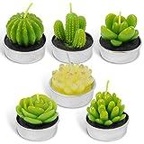 LA BELLEFÉE Tealight Cactus Candles, Delicate Succulent Handmade Cute Mini Plants Candles...