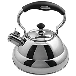10 Best Tea Kettle For Gas Stove 2019 Expert Reviews