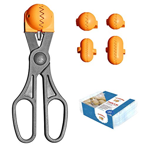 Pack  Utensilio Multiusos Color Naranja   4 moldes Intercambiables para masas + Pack 20 Bandejas conservación   100% español : Patentado y Fabricado en España