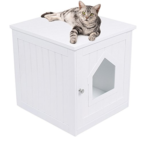 Internet's Best Decorative Cat House & Side Table