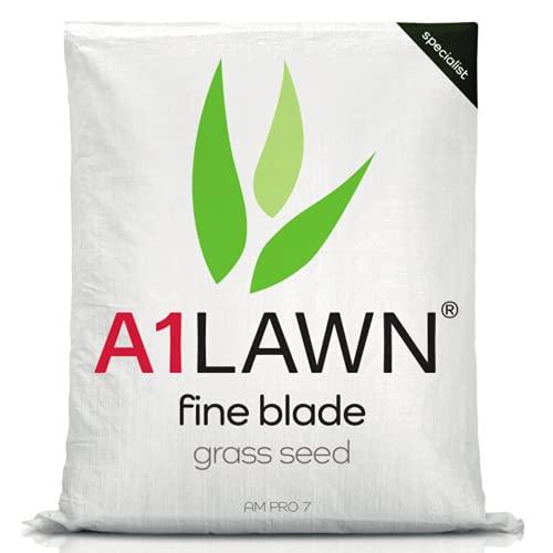 A1 Lawn AM Pro 7 Fine Blade Grass Seed, 5kg (125m2) - UK Premuim...