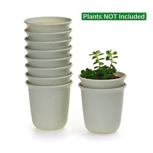 T4U 9CM プラスチックミ二植木鉢 ラウンド 多肉植物 サボテン鉢 フラワーポット プランター容器 マーブルホワイト 10個入り