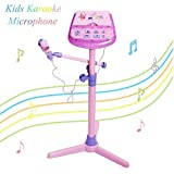 Kids Karaoke Microphone Musical Toys - Happytime Adjustable Stand Karaoke Machine with Pink