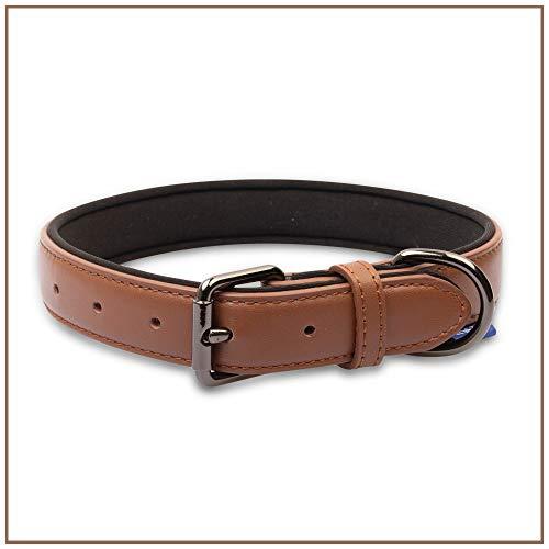 PROFTI Lederhalsband für Hunde, Leder mit Schaumstoff (M, Braun)