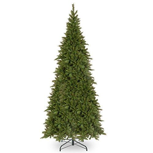 National Tree 10 Foot Tiffany Fir Slim Tree (TFSLH-100), ft