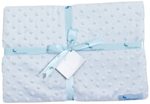 Interbaby 881 Blanket Microfibre Light Blue by Baby-Walz