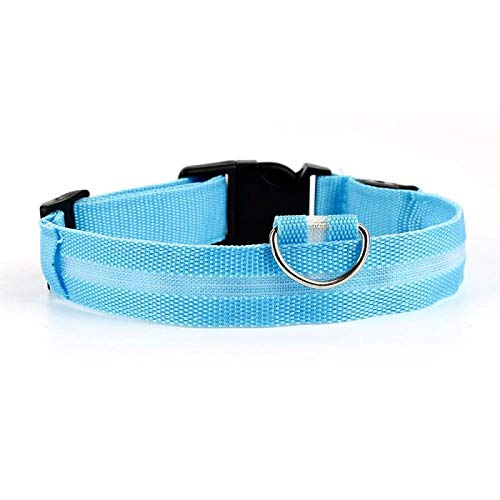 ZYYC 5 Sizes Battery Led Dog Collar Anti-Lost/Car Accident Avoid Collar For Dogs Puppies Dog Cats Collars Luminous Pet Supplies-blue_34-41cm