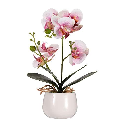 Asvert Phalaenopsis Fiori Orchidea piantina Finta con Vaso Artificiali Vaso di Orchidee Bonsai in Vaso con Vaso Arredamento per la casa Decorazione per la Festa Nuziale Rosa