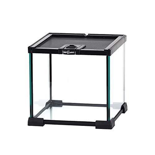 ReptiZoo Mini Reptile Glass Terrarium Tank Full View Visually Appealing Mini Reptile Glass Habitat Cage 8' x 8'x 8'
