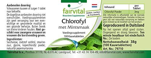 Chlorophyll Kautabletten mit Minzaroma – Großpackung für 100 Tage – VEGAN – 100 Kautabletten - 7