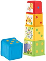 Fisher-Price Stack and Explore Blocks, Set of 5