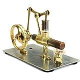 エンジン玩具モデル コレクションギフトミニホットエアースターリングエンジンモデル単気筒 エンジン模型教育玩具 (色 : Gold, Size : One size)
