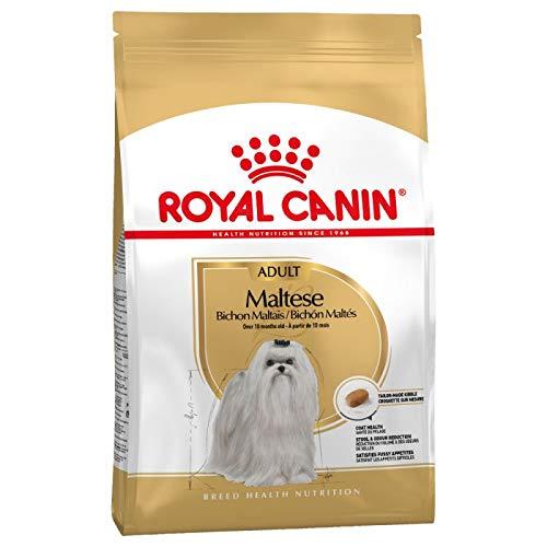 Royal Canin- Maltese Adult 1,5kg Ab dem 10. Monat