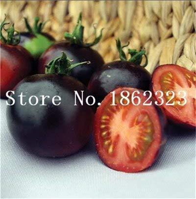 Shopmeeko Graines: 100 pcs/sac bonsaï arc tomate, plante rare de tomate, de légumes bonsai & amp organique; bonsaïs de fruits, plantes en pot pour la maison & amp; jardin: 12
