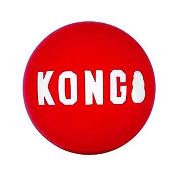 KONG - Signature Balls - 2 Paquets de Balles Résistant pour la Chasse et la Récupération - pour Chien Taille Moyenne