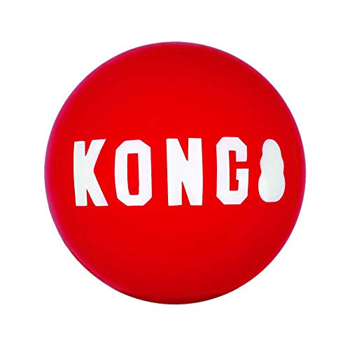 KONG – Signature Balls – 2er-Pack, Robuster Ball zum Jagen und Apportieren – Für Mittelgroße Hunde