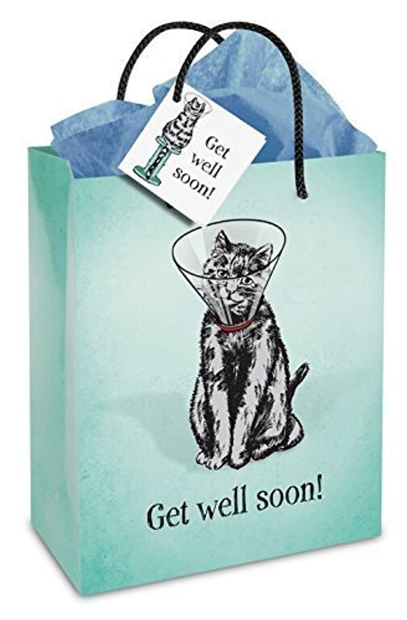 Get Well Soon Cone Kitty Gift Bag