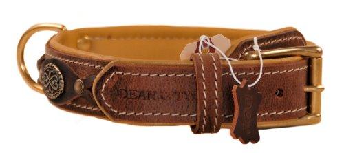 Dean and Tyler Hundehalsband, Leder, mit Messingplatte, 61 x 3,8 cm, für Halsumfang von 55,9 cm bis 66 cm, Braun