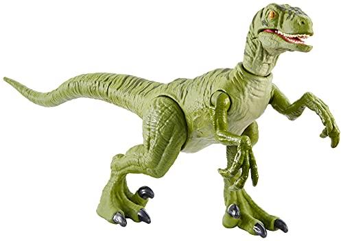 Jurassic World- Colpo Selvaggio Dinosauro Velociraptor Articolato con Mossa d'Attacco, Giocattolo per Bambini 4+Anni, GJN92, Multicolore
