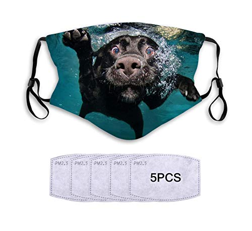 Dog in The Water Face Decorative Protection Windproof Reusable Comfortable Breathable with 5 Replaceable Filters