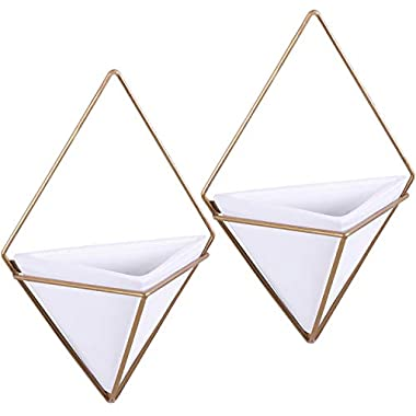 Modern 11-Inch Triangular White Ceramic Hanging Wall Planters with Metal Frames, Set of 2