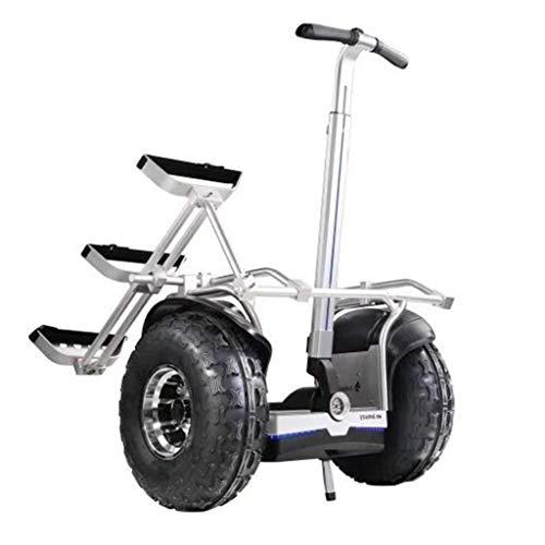 WuKai Zwei-Rad-Balance-Auto Golf-Version Smart Balance-Auto Elektro-Zweirad Denken Elektro-Zweirad