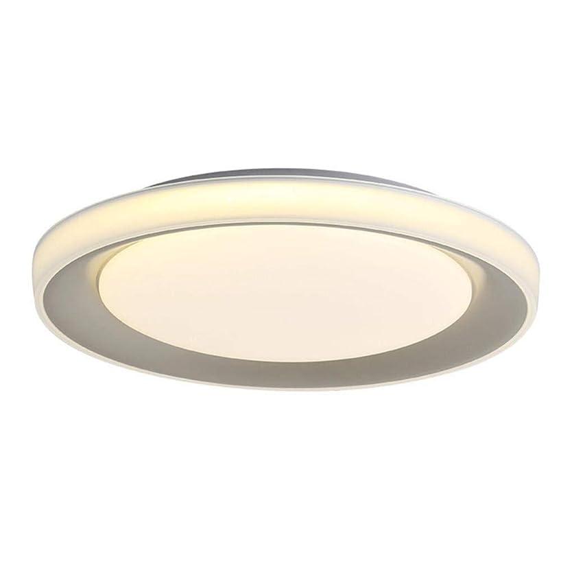 エゴイズム終了する下に向けますCattleBie 天井のランプベッドルームライト北欧のシンプルでモダンな客室シーリングライトウォームロマンチックツェッペリンファッション創造リビングルームの装飾ランプ (Color : Gray, サイズ : 50cm-18W)