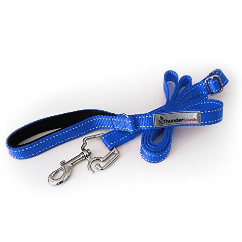 ThunderLeash No-Pull Dog Leash (Small (12 to 25 lbs), Blue)