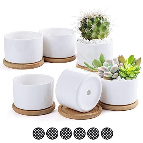 TsunNee Keramik-Blumentöpfe, 7,6 cm, klassische runde Sukkulentententöpfe, weiße Mini-Bonsai-Töpfe für Zuhause, Garten, Büro, Dekoration, Schreibtisch, Fensterbank, Geschenk, 6 Stück