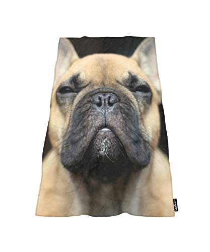 Moslion Comfy Bath Towels Funny French Bulldog Soft Bathing/Beach/Camping Towel for Women Men Girls Boys Large Size 64x32 Inches