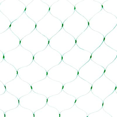 PetiDream Economical Bird Netting,Strawberry Net,Blueberry Bush Netting,Fruit Tree Netting Protect Vegetables,Fruits from Birds and Hawks in 6.5'x 33',Green