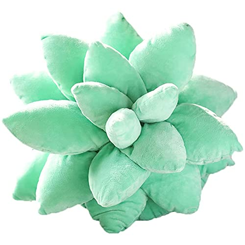 SXFYWYM 3D Suculents Cactus Pillow Suculent Plush Pillow Cute Plant Throw Pillow, Novelty Flower Pillow for Garden or Lovers, Home Bedroom Room Decoration for Bedroom Room Home Decoration