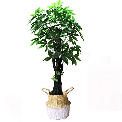 Yipianyun Palme Palmenbaum Königspalme, Cocospalme Kunstpflanze Kunstbaum Künstliche Pflanze Echtholz Hochzeit/Party Empfangstisch Blumen,Weiß,160cm