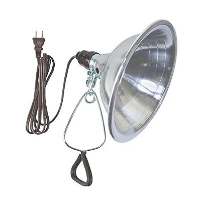 Woods Clamp Lamp