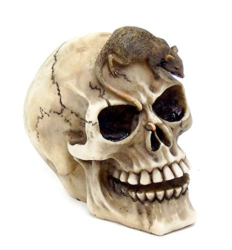 Realistic Skull with Mouse Figurine