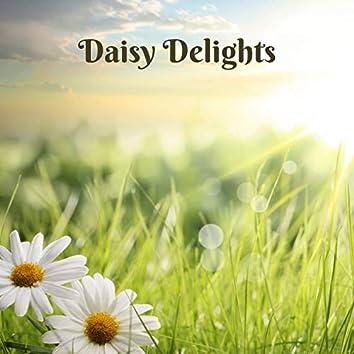 Daisy Delights