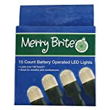 Dazzling Deals Merry Brite 15 Count Battery Operated LED Lights