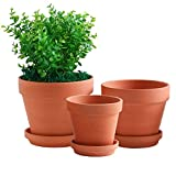 Yishang Large Terracotta pos with Drainage Hole and Saucers,Ceramic Clay Planter Pots for Indoor/Outdoor Plants,6 Inch & 7 Inch & 8 Inch,Set of 3