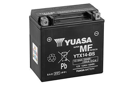 YUASA BATTERIE YTX14-BS AGM offen mit Saeurepack