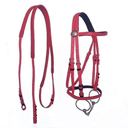 DER Cuidador de Caballos Duradera Collar Principal Caballo Cabestro Hípica Brida PVC de Carreras de Caballos Equipo Ecuestre Accesorios para Caballos (Color : Red)