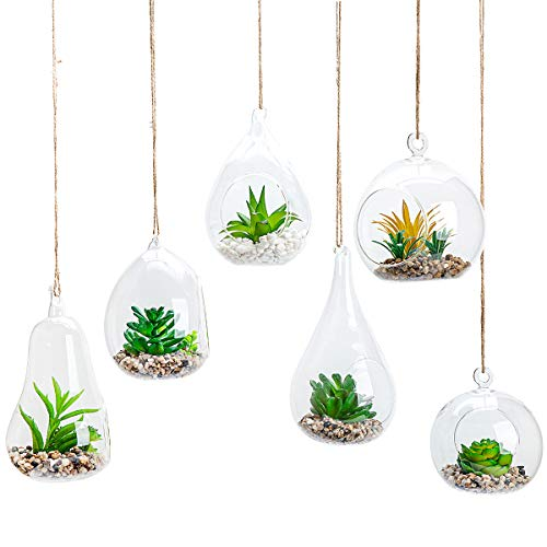 UMEIED 6pcs Glass Hanging Air Planter Terrarium Vase Holder for Succulent Air Ferns Candles,Home Office Decorations Gift Idea(Not Included The Plants)