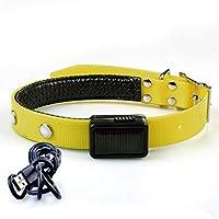 Luteoing ペットの首輪犬の首輪TPUソーラー充電、ツェッペリンルミナス、充電用USBフラッシュライトアップカラー (Color : Blue, Size : Charging (M))