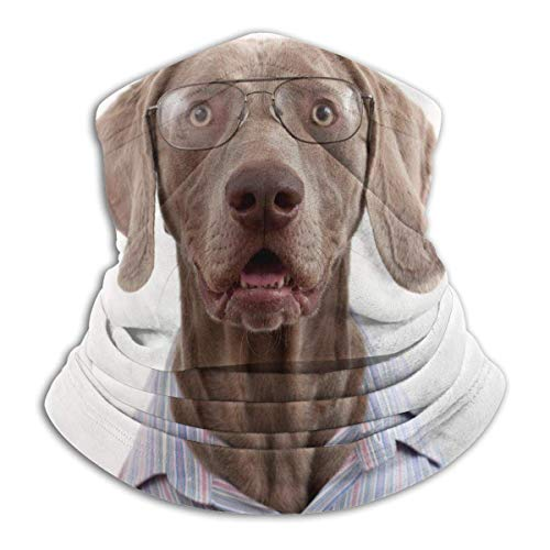 XXWKer Microfibre Chapeaux Tube Masque Visage Tour de Cou Cagoule, Dog Animal Watercolor Vintage Neck Gaiter Warmer Windproof Face Dust for Men Women