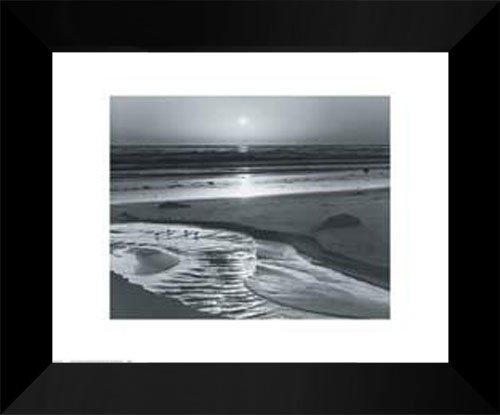 Ansel Adams FRAMED Art Print 15x18  Birds on a Beach