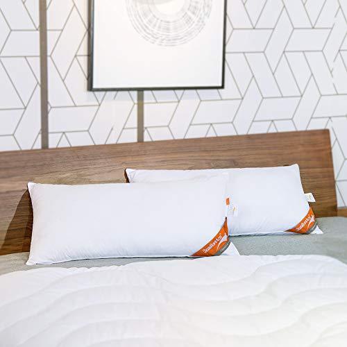 ComfortAce® Cervantes 60x70 cm Hochwertiges 2er Set Kopfkissen,Kissen mit Bezug aus Baumwolle,Softes Gewebe und Atmungsaktiv Mikrofaser Füllung,Anti-Milben Allergikergeeignet Waschbar,Weiß MEHRWEG